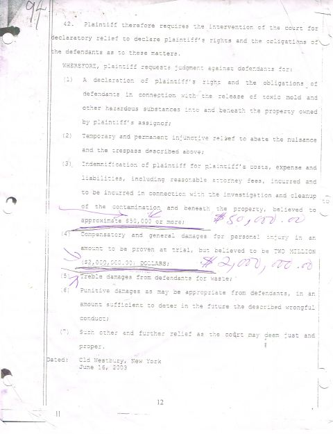 Page 12 from the Original and Supplemental Summons filed by 1st crooked lawyer hired for the case but who was fired by Charles McCray for taking bribes, the task of which was illegally taken over by William Hamel when he was hired as he was in the midst of taking bribes on other cases. Photo courtesy of world-news-media.com